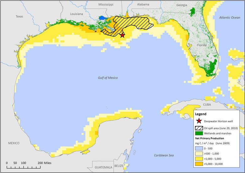BP Oil Spill Information