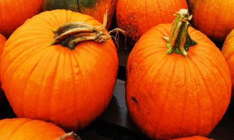 Garden week: Pumpkins