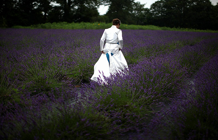 24 hours: Swettenham, England:  Bride Helen Gregory walks amongst the lavender