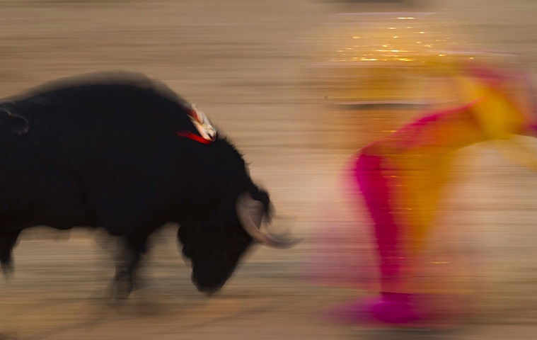 A bullfighter performs during a bullfight at the Las Ventas Bullring in Madrid
