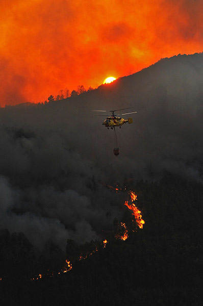24 hours in pics: Portugal forest fires