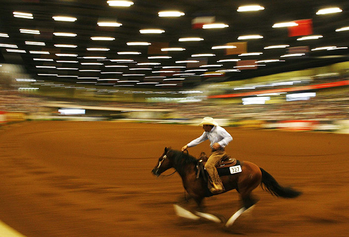 World Equestrian Games in Lexington