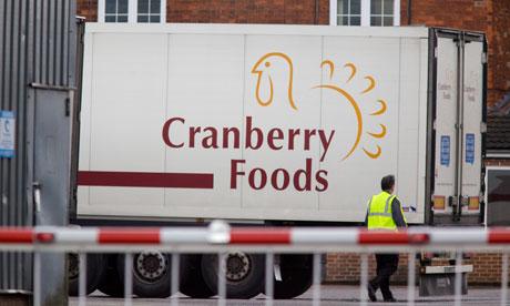 Cranberry Foods