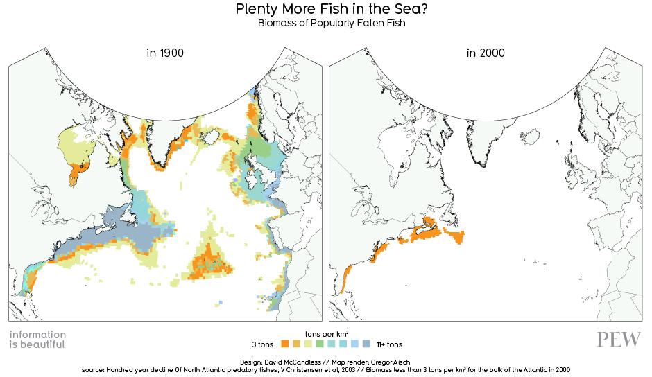 Information is Beautiful on vanishing fish stocks