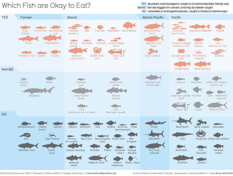 Information is Beautiful on which fish are OK to eat