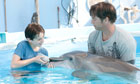 Dolphin Tale still