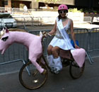 Unicorn photo on occupy wall street march