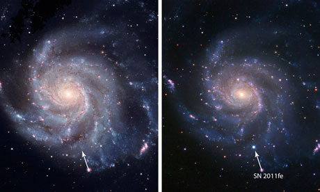 Supernova in Pinwheel galaxy
