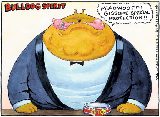 Steve Bell cartoon, 8 December 2011