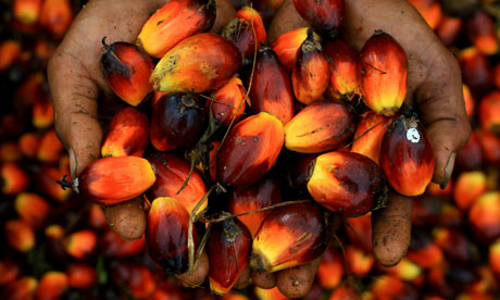 A worker holds a handfull of palm oil se