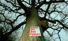 Forest of Dean was Under Threat From The Forestry Commission Sell Off