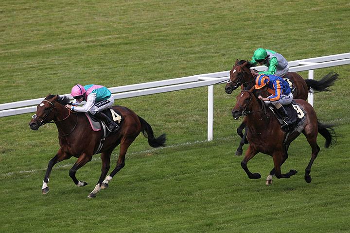 royal horse racing