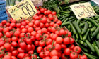 E coli outbreak: Tomatoes and cucumbers in a Berlin market