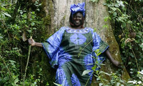 http://static.guim.co.uk/sys-images/Guardian/Pix/pictures/2011/9/26/1317058832787/Wangari-Maathai--007.jpg