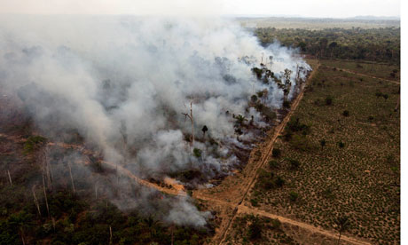 A deforested area burns near Novo Progresso in Brazil