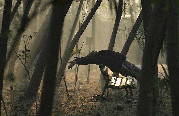 Нью-Дели, Индия: мужчина делает ранним утром зарядку в парке