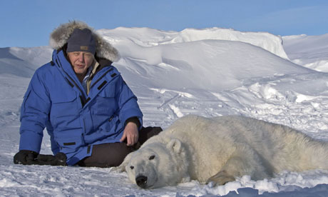 Sir David Attenborough in Frozen Planet