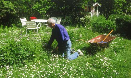 'gardening'/