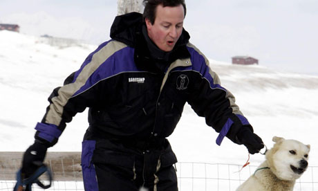 POLITICS Cameron