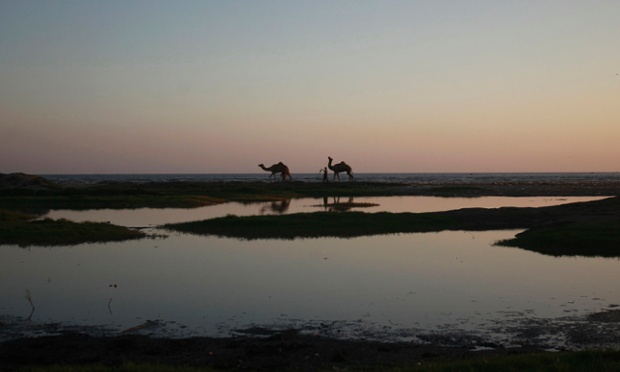 A peaceful scene in Pakistan as two men walk with camels at sunset by the sea in Karachi.