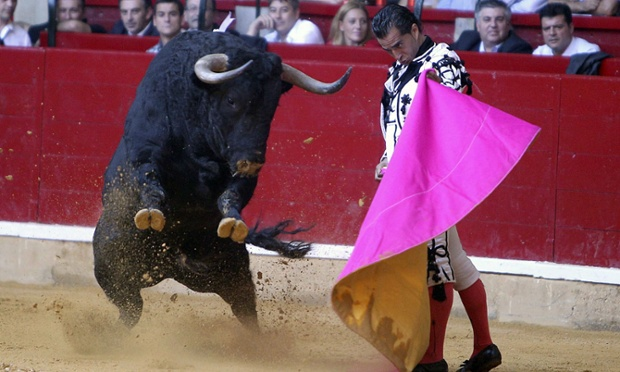 Spanish bullfighter Ivan Fandino wearing a costume in the style of Goya in action during a 'goyesca' bullfight on the occasion of El Pilar bullfighting fair in Zaragoza, Spain. Bulls from the Gavira ranch were fought during the event. Photograph: Javier Cebollada/EPA
