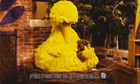 Big bird in obama ad