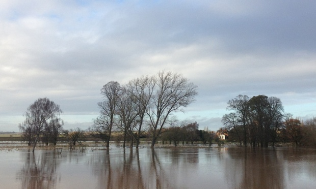 Reader Jack (Commodore) has submitted this photograph of flooding in Charlecote Park, Warwickshire.