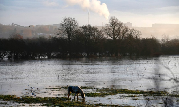 A horse grazes surrounded by flood waters from the River Soar in Barrow Upon Soar.