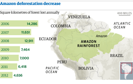 Amazon deforestation hits record low | Environment | The ...