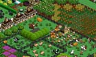 Farmville. Screenshot from a hi-res screen
