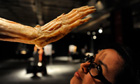 A woman visits Body Worlds