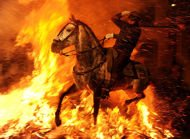 Pics of the Year 2012: Horse runs through fire by Jasper Juinen