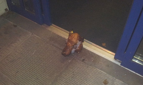 The pig's head left outside the community centre in Leicester used by a Muslim group for prayer