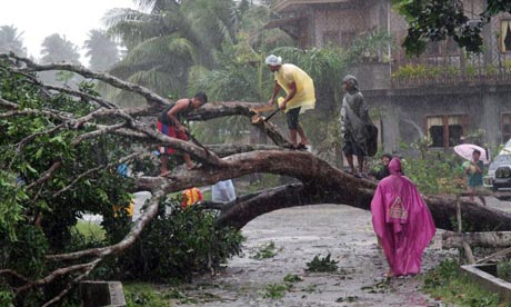 Damage from typhoon Bopha in the Philippines