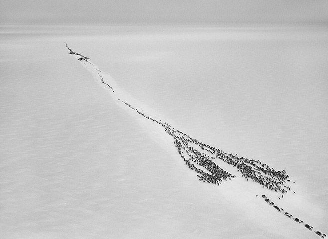 Salgado: Crossing the Ob River to enter the Arctic Circle