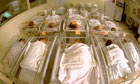 Babies in maternity ward