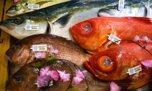 More colour from Shanghai: fish on show at the International Fisheries & Seafood Expo.