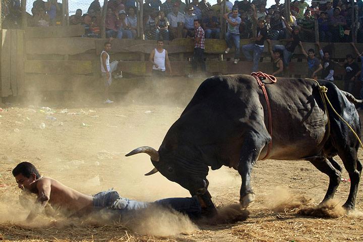 Карасо, Никарагуа: бык бросился на человека во время фестиваля Санта-Тереза