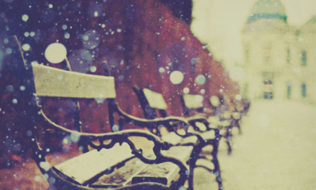 Snowy benches along a boulevard in Vienna