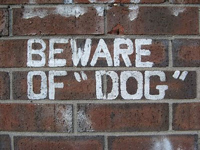 Beware of 'Dog'.