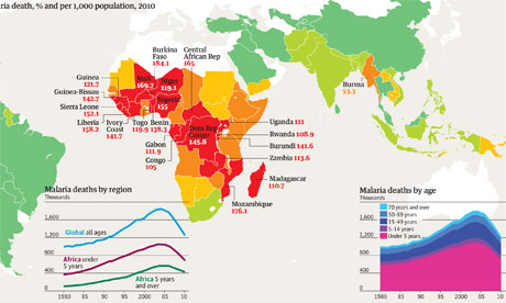 Malaria graphic