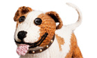 Battersea dog's home knit