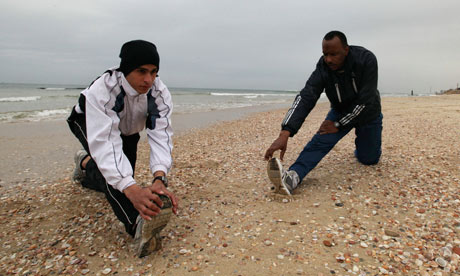 Palestinian runner uses Gaza marathon to prepare for London 2012 Olympics