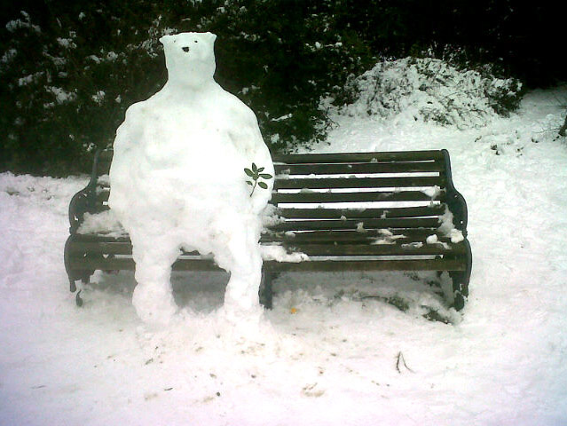 Readers snow pictures: Snowpolarbear in Vicky Park. Whoever made this: I love you