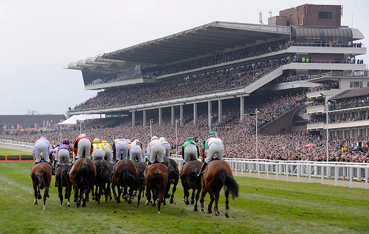 racing from cheltenham