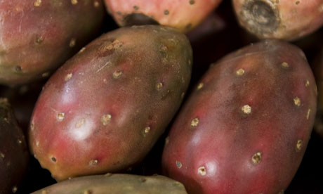 The Weekend quiz: prickly pears