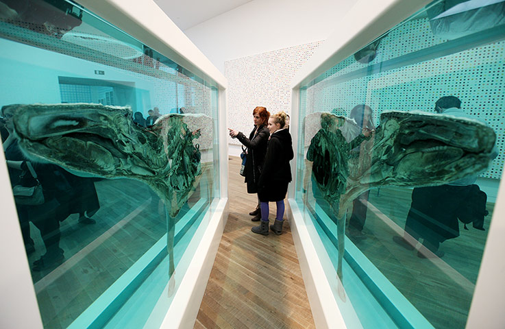 Damien Hirst: Visitors look at Damien Hirst's piece 'Death Explained'