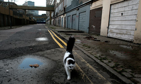 Cat walking through deserted Heygate estate, south London
