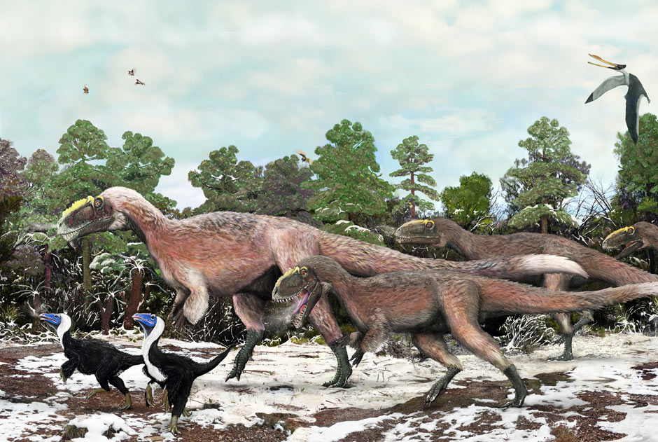 Artist's impression of feathered dinosaur Yutyrannus huali