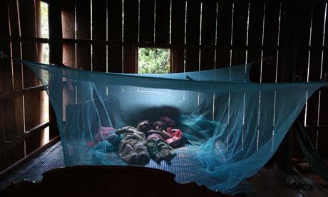 Η ελονοσία bednet, Καμπότζη